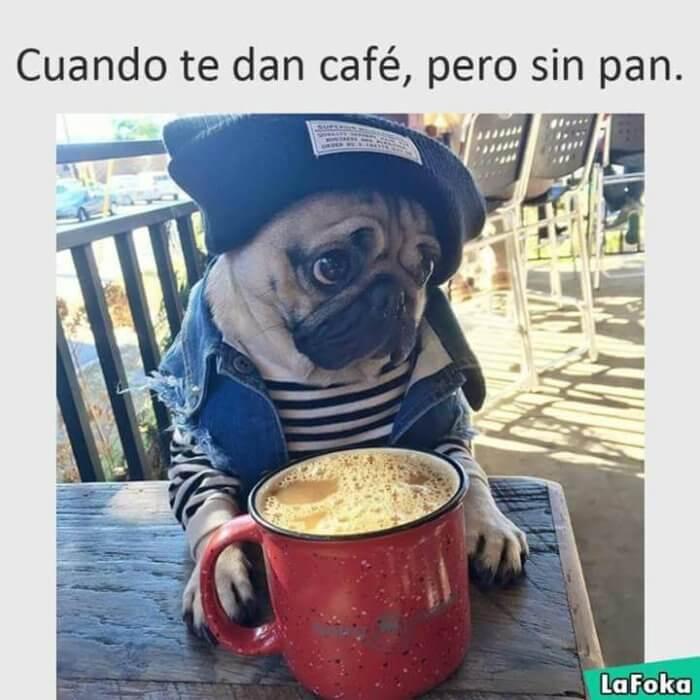 Cuando solo te dan cafe