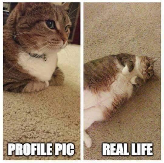 la vida real siempre es peor que la foto de perfil