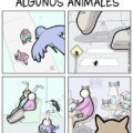 Animales vs el mundo real