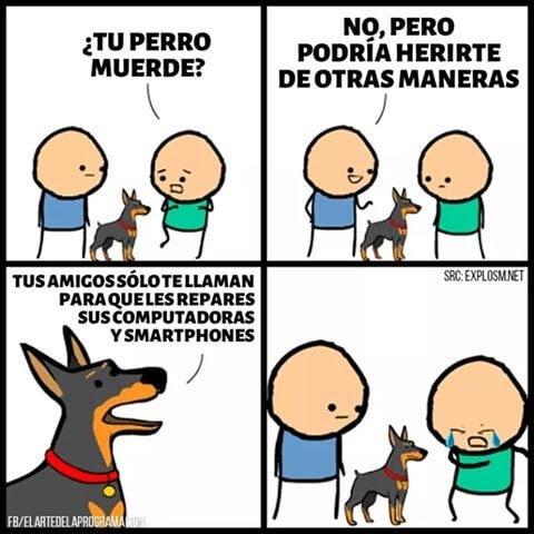 El perro que hace mucho daño