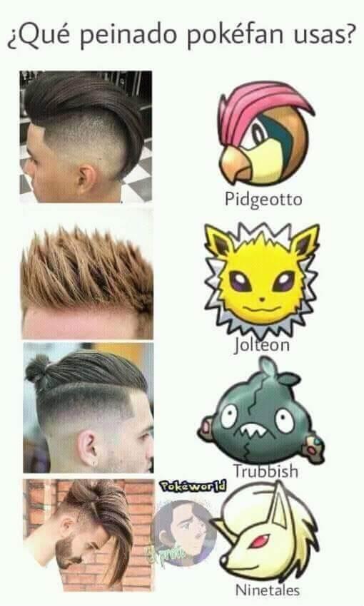 Peinados pokefan