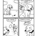 La conciencia de un perro
