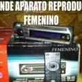Se vende aparato reproductor femenino