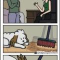 Cada vez que queremos limpiar