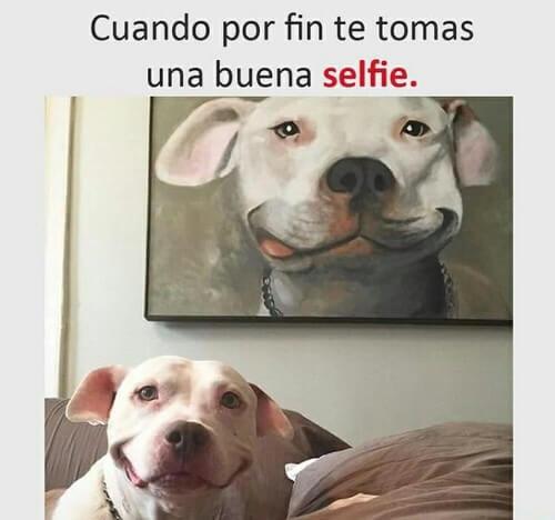 Cuando te tomas una buena selfie