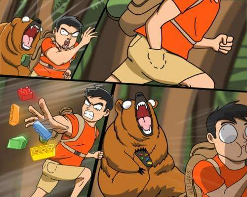 Medidas contra osos