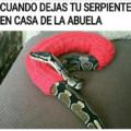 Cuando dejas a la serpiente en casa de la abuela
