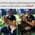 Como si acariciara un Pitbull