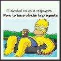El alcohol no es la respuesta