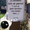 Cuidado con el perro y el gato