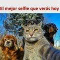 El mejor selfie que veras hoy