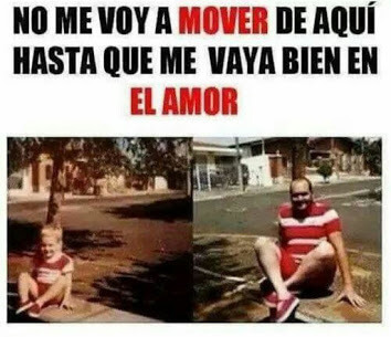 No me movere hasta encontrar el amor