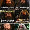 Señales de que eres Hagrid