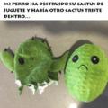 Mi perro destruyo su cactus de juguete
