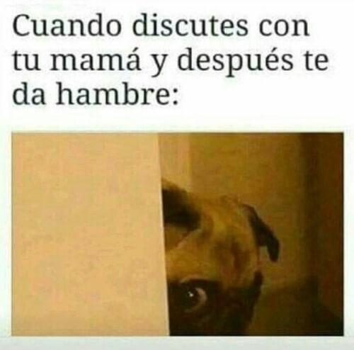 Cuando discutes con tu madre