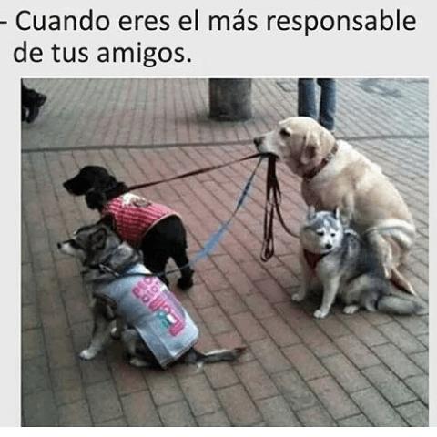 Cuando eres el amigo responsable