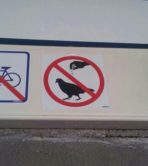 Prohibido sazonar aves