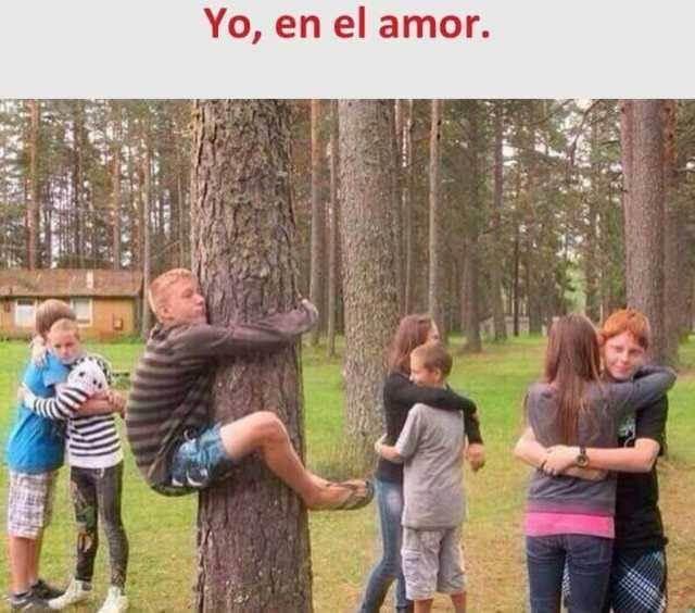 Todos en el amor