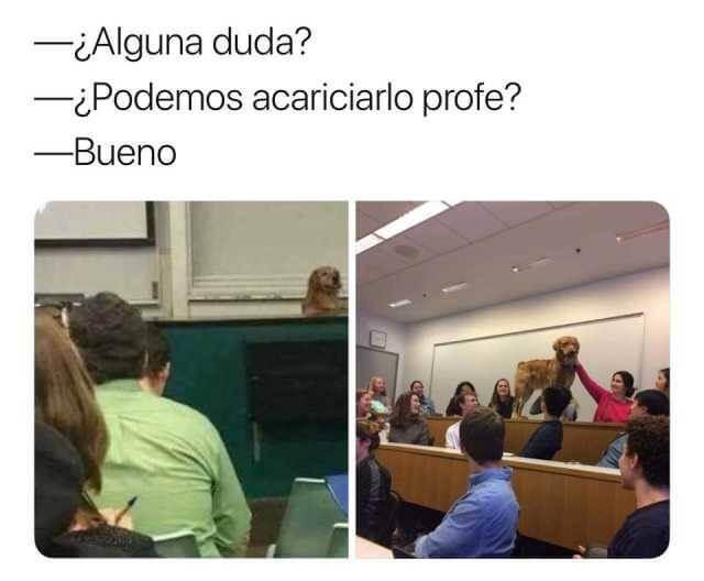 Cuando el profesor pregunta si hay dudas