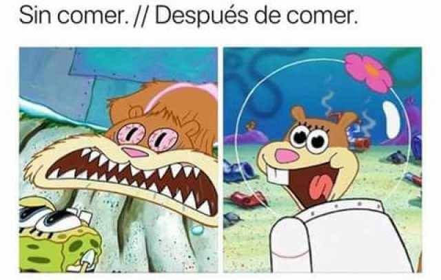 Sin comer vs despues de comer