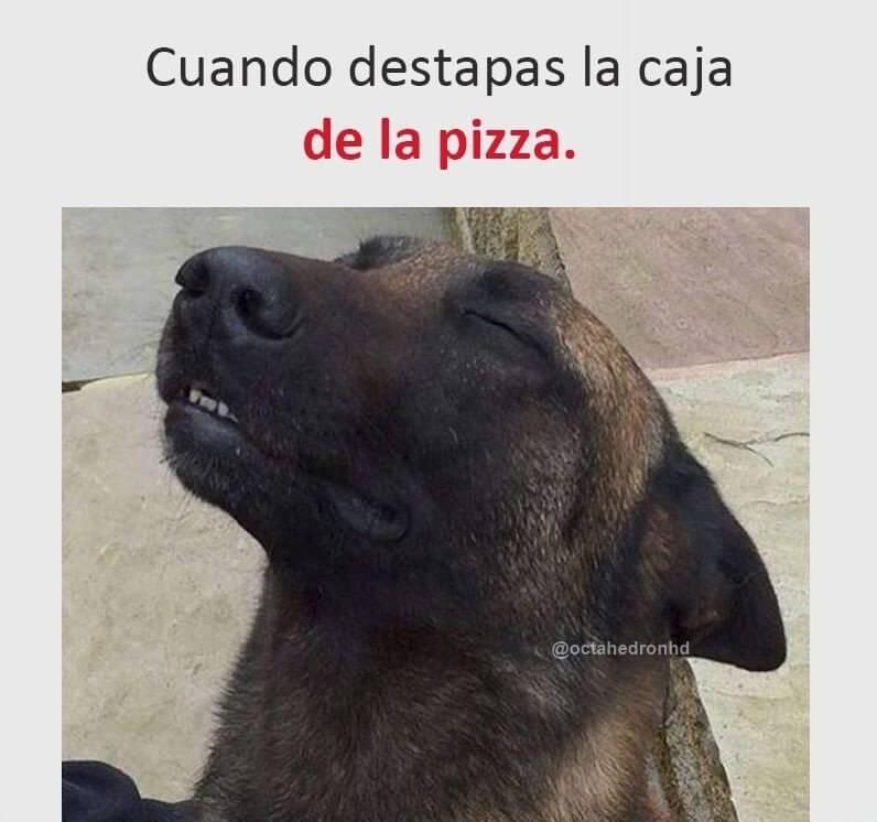 Cuando destapo la caja de la pizza