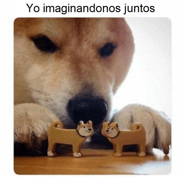 Imaginandonos juntos