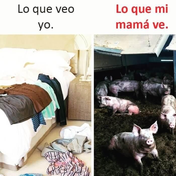 Lo que veo vs lo que ve mi madre