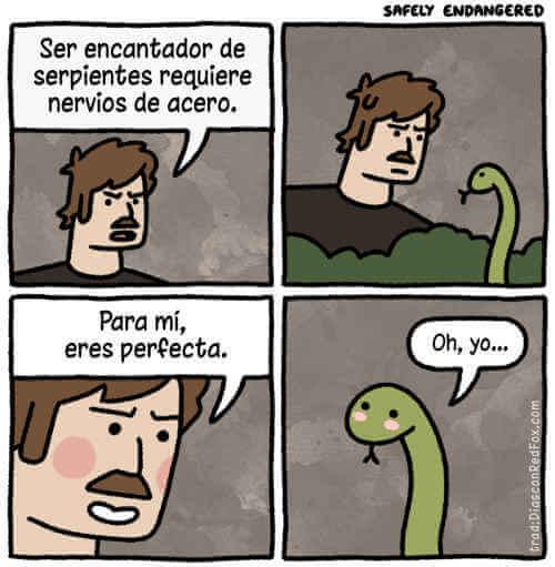 Cuando dicen que son encantadores de serpiente