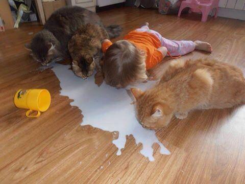 Cuando tu hija se lleva demasiado bien con los animales