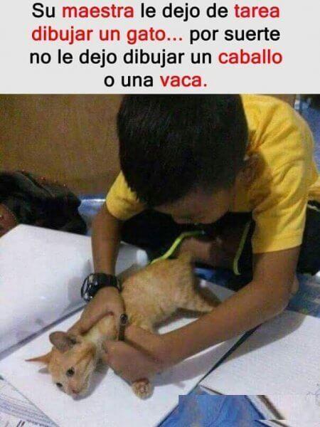 La maestra lo mando a dibujar un gato