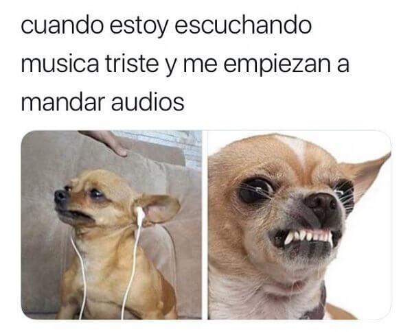 Cuando escucho musica triste