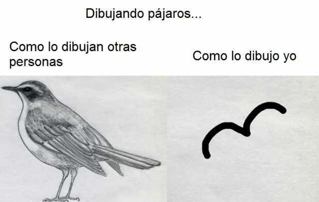 Dibujando pájaros