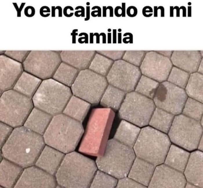 Yo encajando en mi familia