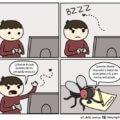 Cuando una mosca se te acerca