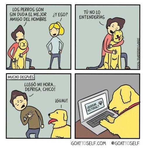 Los perros son el mejor amigo del hombre