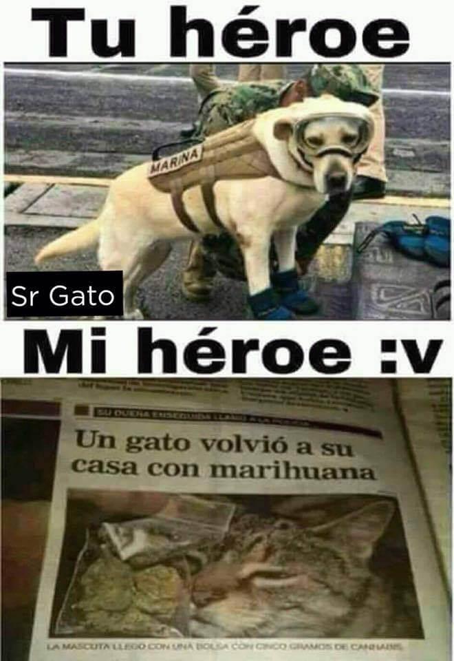 Tu heroe vs mi heroe