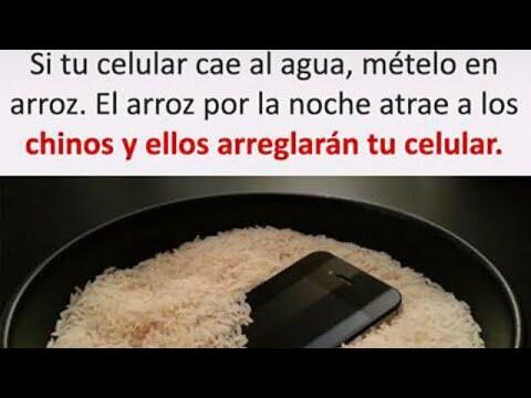 Como arreglar un celular mojado