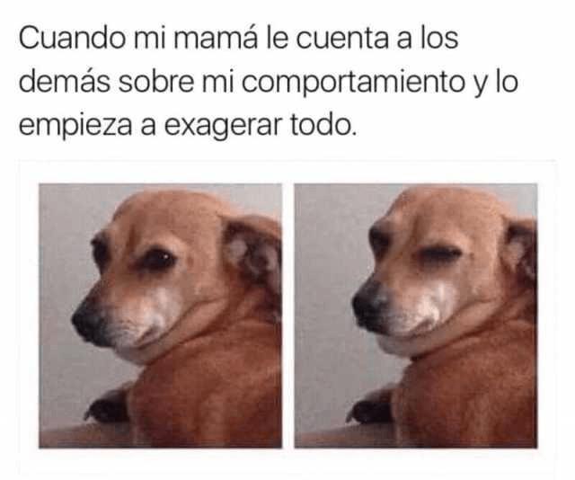 Cuando tu madre habla de ti