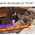 Despues de estudiar 15 minutos