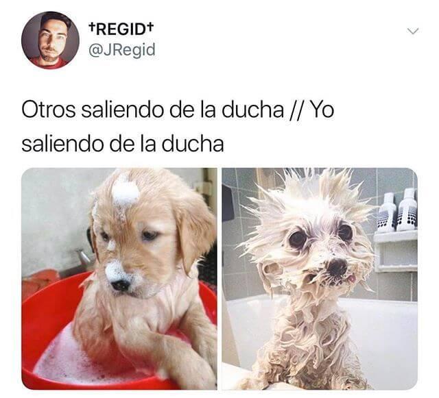 Otros saliendo de la ducha