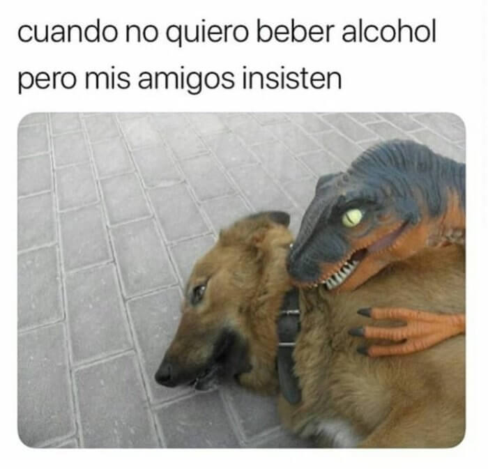 Cuando no quiero beber alcohol