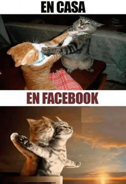En casa vs Facebook
