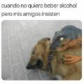 Cuando no quieres beber alcohol