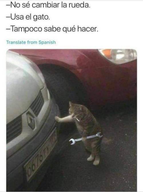 Usa el gato para cambiar la rueda