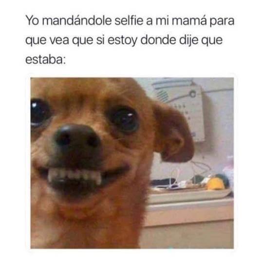 Yo mandando selfie