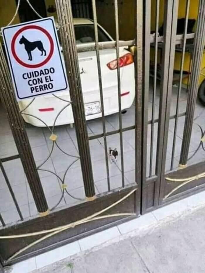 Tenga cuidado con el perro