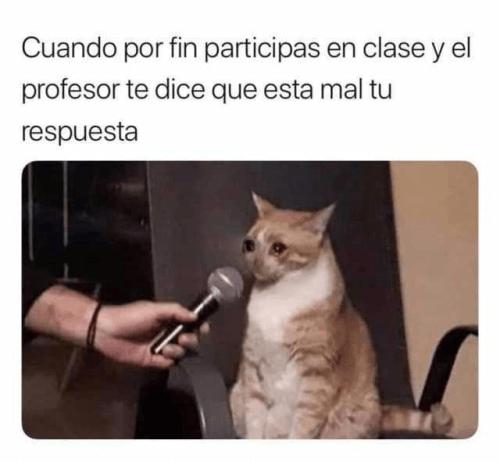 Cuando participas en clases