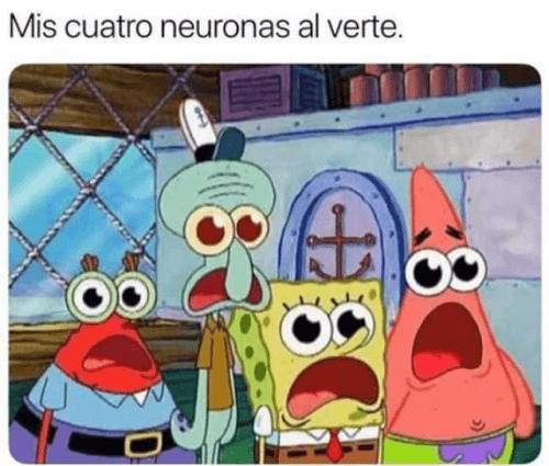 Mis neuronas