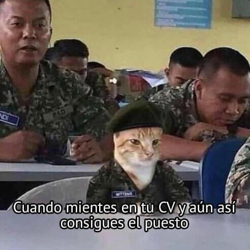 Cuando mientes en el curriculum