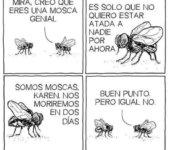 La vida de las moscas